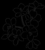 製品イメージ