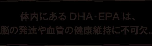 体内にあるDHA・EPAは、脳の発達や血管の健康維持に不可欠。