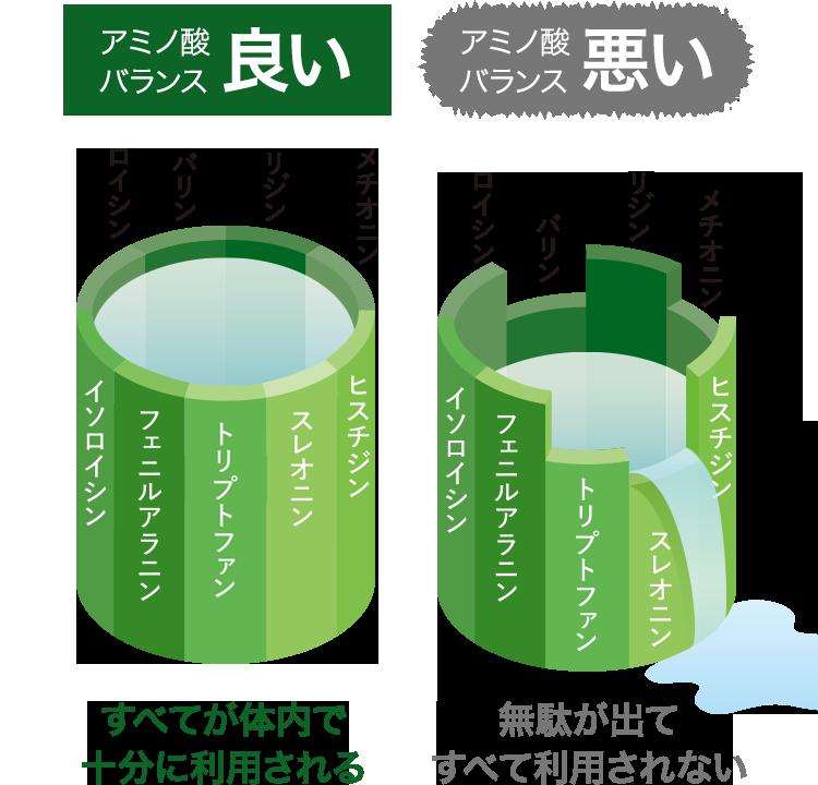アミノ酸バランス