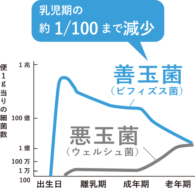 出生日から老年期にかけての便1g当たりの細菌数の遷移グラフ 善玉菌(ビフィズス菌)は乳児期の約1/100まで減少