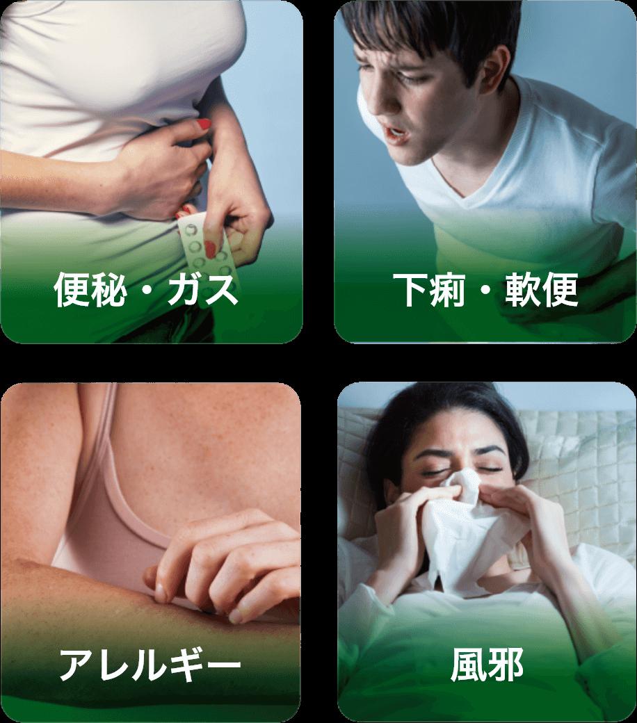 便秘・ガス、下痢・軟便、アレルギー、風邪