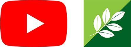 YouTube・ニュートリライト